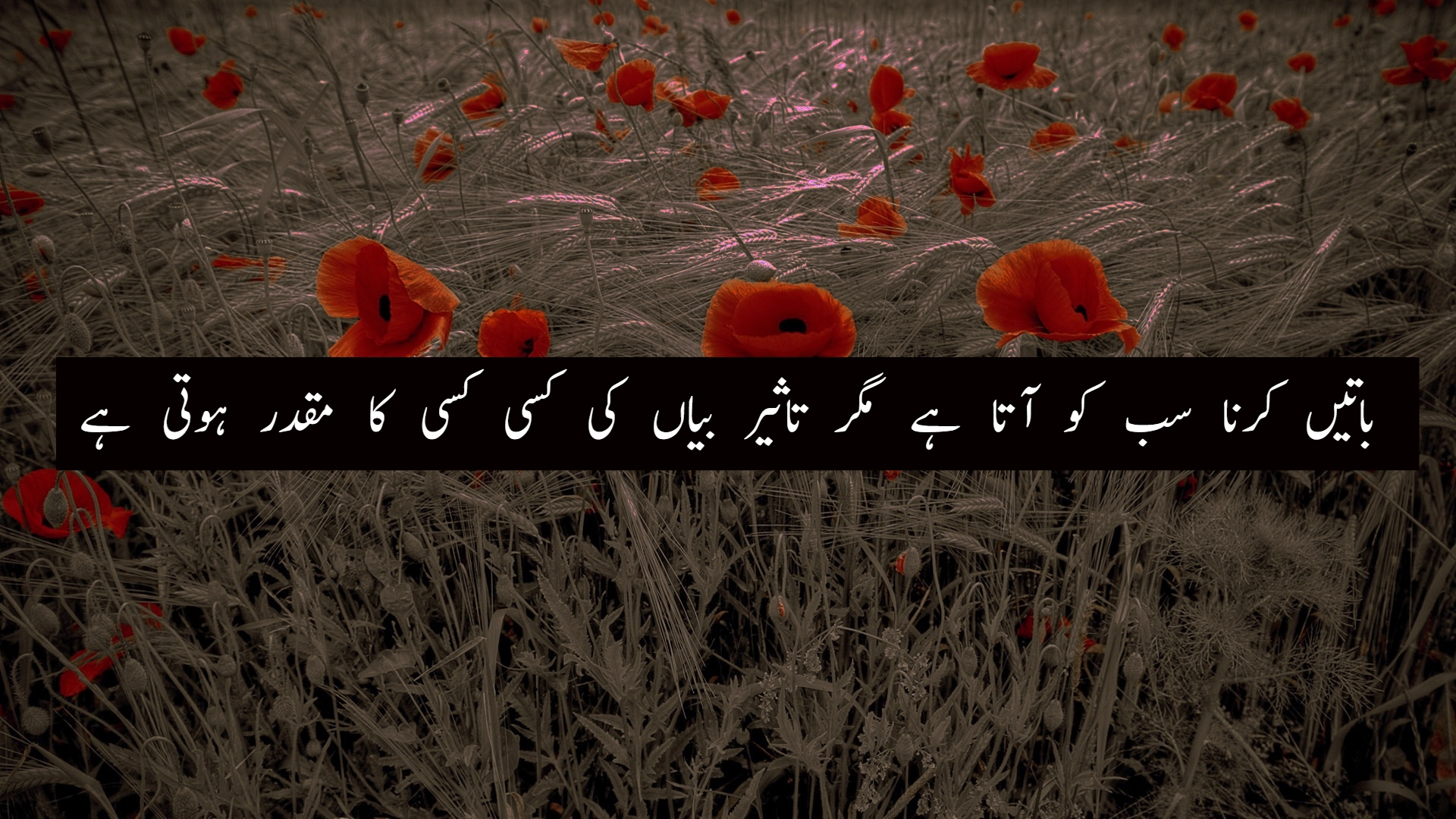 5+ Inspirational Islamic Quotes in Urdu With Beautiful Images